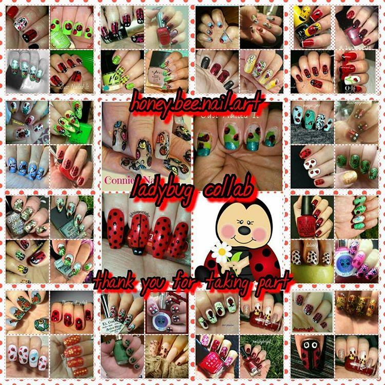 Ladybug collage 2018