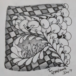 Daily Zentangle - Day 7 - Hermit Werds - Zentangle using Flux, Knightsbridge tangleation, Fescu, and Pokeroot