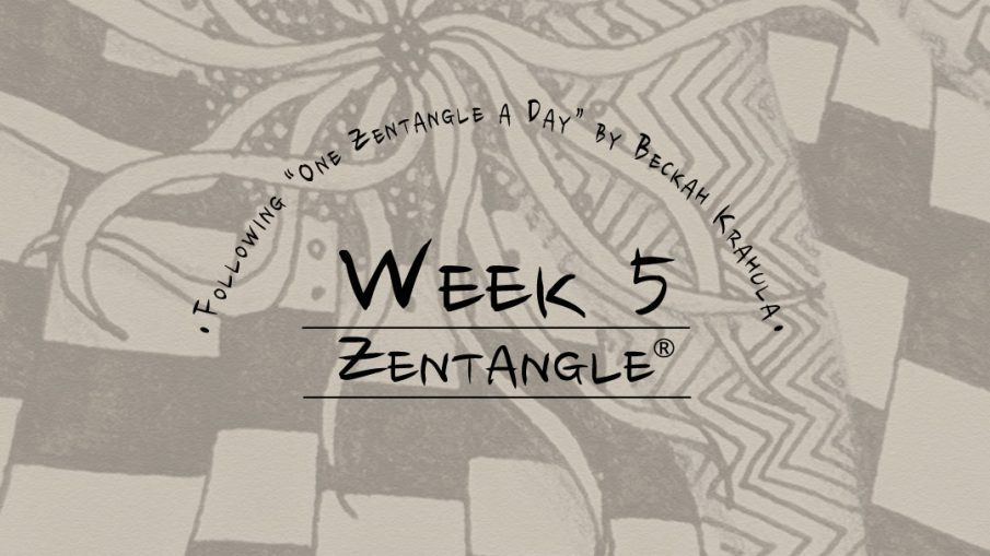 Daily Zentangle - Week 5 - Hermit Werds - Lisa's fifth week of progress; background is Squid, Knightsbridge tangleation, Static, and Nipa tangleation