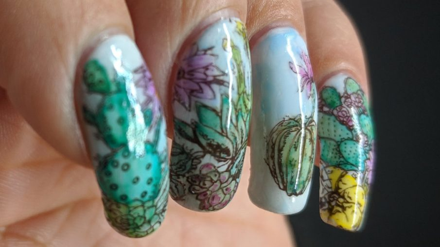 Watercolor Cactus - Hermit Werds - nail stamped cactus arrangement colored with watercolor paints