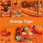#Pantone2019WinterChallenge - Orange Tiger