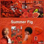 #pantone2019winterchallenge - Summer Fig