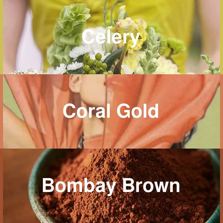 #pantone2020winterchallenge - Celery, Coral Gold, and Bombay Brown