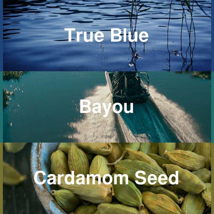 True Blue - Bayou - Cardamom Seed