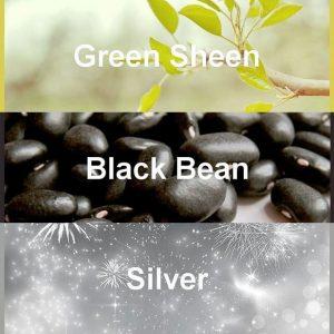 #pantone2020winterchallenge - Green Sheen, Black Bean, Silver