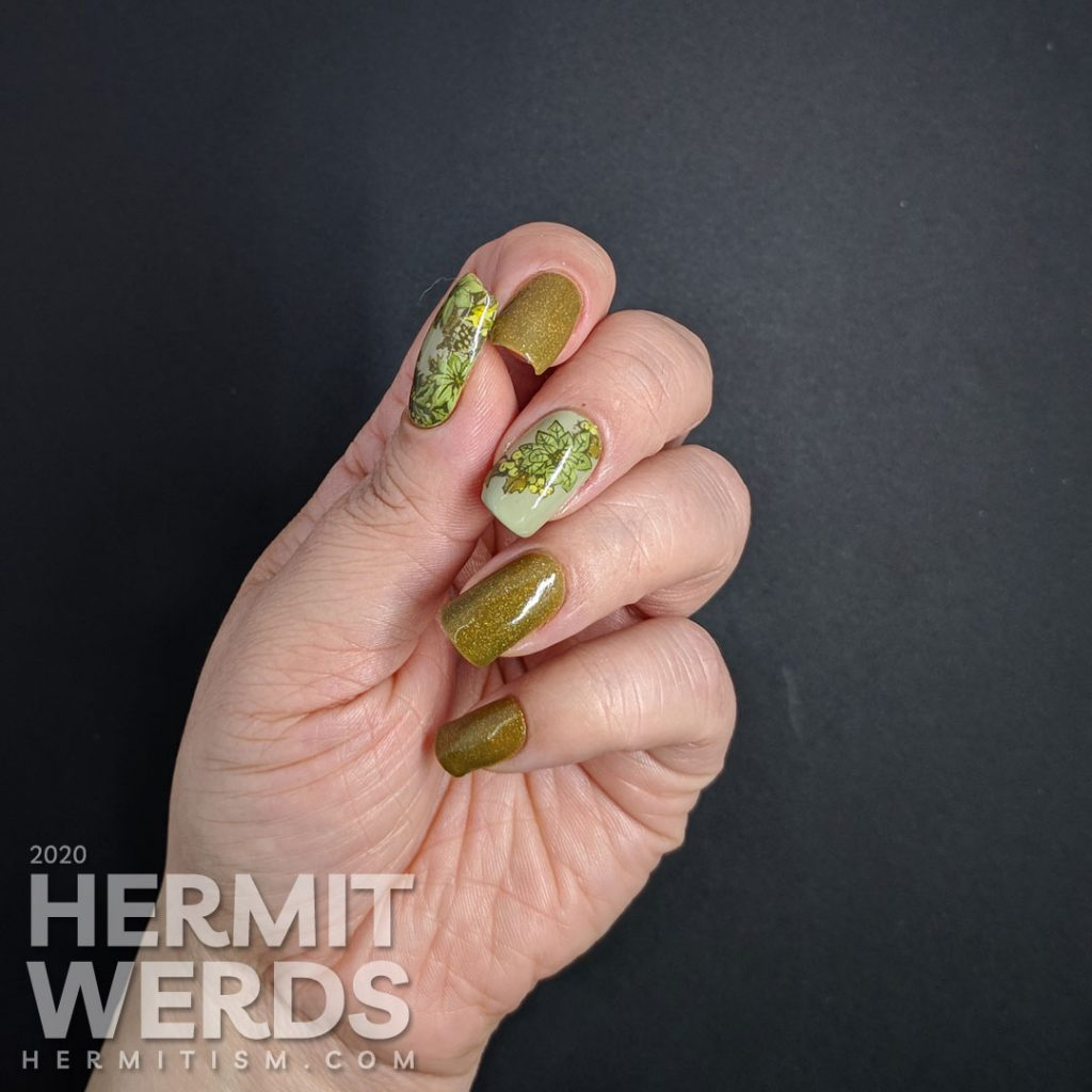 Olive Christmas art featuring accent nails with poinsettia stamping decals and a wee bird and holographic olive polish.