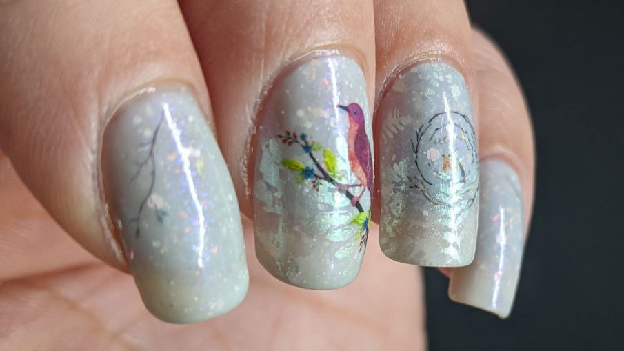 Bird nail art with red bird, robin, and bluebird water decals placed on a white and blue thermal polish with shimmering ferns stamped on top.